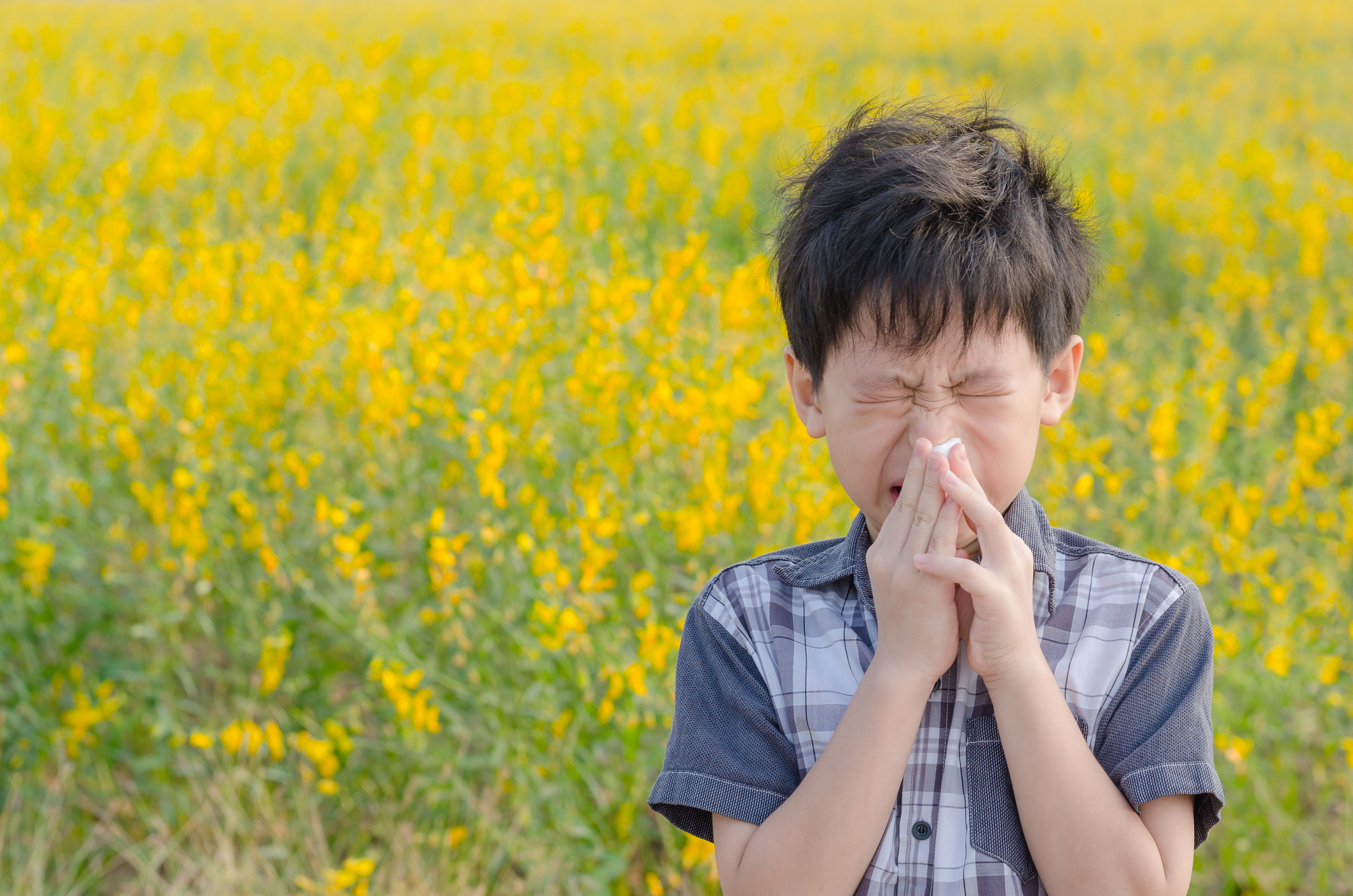 Manage your allergy symptoms